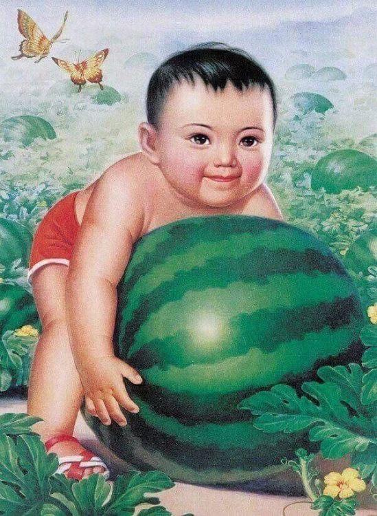 238154676_melonbaby.thumb.jpg.eccf85954e210bc027e5634750926899.jpg